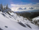 Ronda - Sierra de las Nieves
